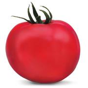 Семена томата ЯДВИГА F1 фирмы Китано