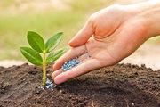 Агрохимия,  минеральные удобрения